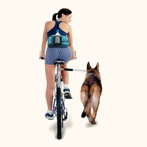 WalkyDog Dog Bicycle Exerciser Review